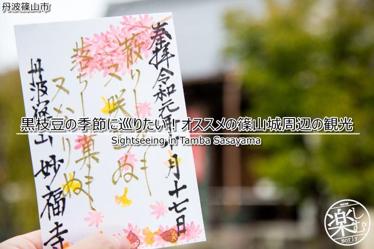 黒枝豆の季節に巡りたい!オススメの篠山城周辺の観光情報を紹介